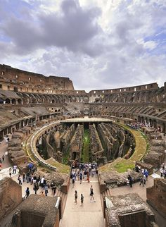 Would love to go here one day! Interior do Coliseu, Roma.