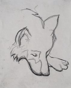 Tim Dayhuff - dessin Best Picture For dessin croquis animal For Your Taste You are looking for somet Sketchbook Drawings, Art Drawings Sketches Simple, Animal Sketches, Pencil Art Drawings, Animal Drawings, Cute Drawings, Wolf Sketch, Drawing Pin, Gb Bilder