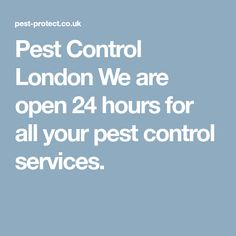 Pest Control London  We are open 24 hours for all your pest control services.