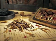 All you need to know about Chinese Medicine as an Alternative Medicine Therapy