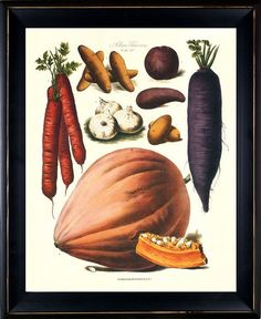 Antique French Vegetable Print 28 by BelleBotanica on Etsy, $10.00