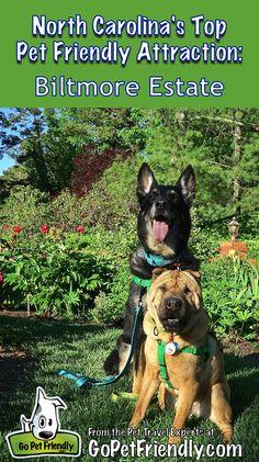 North Carolina's Top Pet Friendly Attraction: Biltmore Estate | GoPetFriendly.com