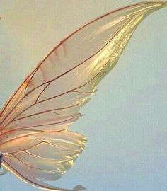 Nature Aesthetic, Aesthetic Images, Aesthetic Vintage, Aesthetic Wallpapers, Yellow Aesthetic Pastel, My Fantasy World, Fairy Wings, Photo Wall Collage, Pics Art
