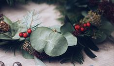 DIY: Adventskranz aus Illex und Eucalyptus | daisiesandglitter Skimmia, Coconut, Leaves, Fruit, Ethnic Recipes, Advent Season, Crafting