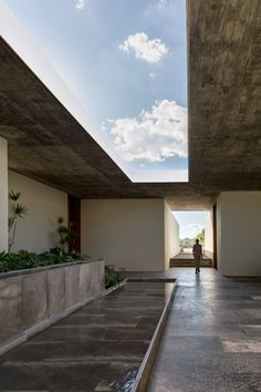 Connected by watery and verdant courtyards, these agricultural offices were designed by CC Arquitectos for a soilless vegetable farm