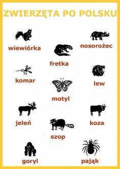 Polski Learn Polish, Polish Words, Polish Christmas, Polish Language, Poland Travel, Gernal Knowledge, Thinking Day, Learn A New Language, Polish Recipes