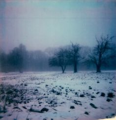 polaroid print by enhabiten on Etsy Love Photography, Landscape Photography, I Love Winter, Meanwhile In, Its Cold Outside, Love Photos, Something Blue, Winter Wonderland, Polaroid