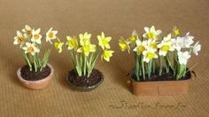 Miniatures and dolls houses: plants and flowers