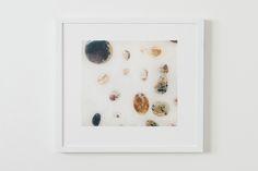 White Frames-9.jpg