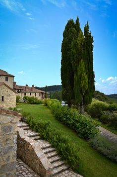 A Tuscan farm where tourists can board or eat local produce.
