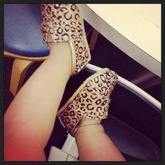 New shoes!✨ ✨#toms #leopard #baby #sparkle #Padgram