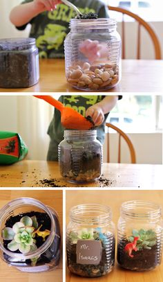 Making terrariums with kids - change up what you add to this fun garden according to the occasion - Christmas gift, Earth Day, Teacher Appreciation Day, Mother's Day, Father's Day, etc.