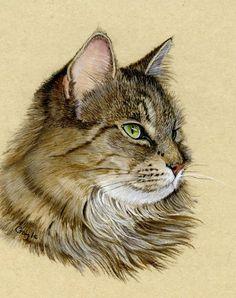 Кошки Gayle Mason — Inhasa