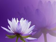 Personality Color Purple - This site tells you a lot of things about you just by your favorite color! For me, it's so true...weird..