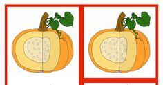 Parts of the Pumpkin.pdf