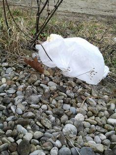 Quark im Pfandglas: Die Geister, die wir riefen [This plasticbag, my friend, is blowin' in the wind, this plasticbag is blowin' in the wind]