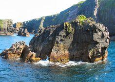 Witless Bay Ecological Reserve Newfoundland