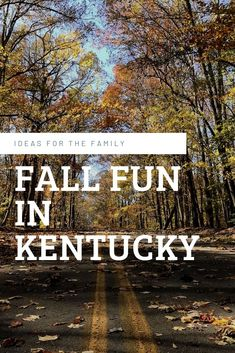 What do you have planned for Fall? If you are in Kentucky, there are great events to help you celebrate Fall Fun! Kentucky Hiking, Kentucky Vacation, Stay In A Treehouse, Fun Fall Activities, Us Road Trip, Worldwide Travel, Family Day, Daffodils, Travel Plan