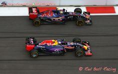 """Marko: """"Si Red Bull abandona la F1, Toro Rosso también se irá""""  #F1 #Formula1 #RussianGP"""