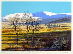 ARTFINDER: Winter Sunlight, Glen of Imaal by Aidan Flanagan - This screenprint of the Wicklow landscape was printed in July 08 and consists of 10 layers, and is printed in a Limited Edition of 45 prints. The print depi. Landscape Prints, Landscape Art, Original Artwork, Original Paintings, Irish Landscape, Irish Art, So Little Time, Art And Architecture, Online Art Gallery