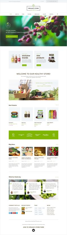 Organic store is a colorful design responsive 4 in 1 #HTML #template for for #agricultural #business, agrotourism, healthy food blog, organic food shop, organic farms eCommerce website download now➩ https://themeforest.net/item/organic-food-eco-products-site-template/17409598?ref=Datasata