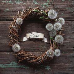 Успела найти последние одуванчики перед дождями _______________ I managed to gather last dandelions before the rains _______________ #dandelion #wreath #june #nature #flowers #flowergram #summer #summertime #instagramrussia #Instagraminrussia #floral #инстаграмнедели #венок  #TheCircleOfSeasons