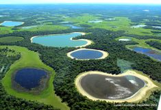 Brazil - Pantanal brackish water lakes (salinas) unique feature of this region of the Pantanal and contribute to the bio-diversity of Fazenda Barranco Alto. Description from pinterest.com. I searched for this on bing.com/images