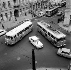ul. Krakowskie Przedmieście, 1972 źródło Jacek Mirosław Warsaw, Public Transport, Ancestry, Buses, Transportation, Europe, Poland, Historia, Living Room