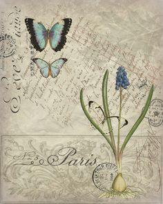 Botanical Print 4