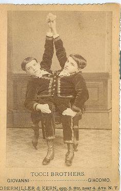 Tocci  brothers  Siamese Twins    Imagine the fashion @ConradCharleston