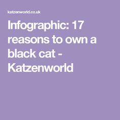 Infographic: 17 reasons to own a black cat - Katzenworld