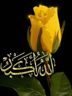 Discover & Share this Animated GIF with everyone you know. GIPHY is how you search, share, discover, and create GIFs. Allah In Arabic, Allah Islam, Allah Calligraphy, Islamic Art Calligraphy, Beautiful Flower Drawings, Amazing Flowers, Islamic Images, Islamic Pictures, Gift Animation