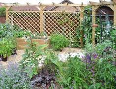 Our premier diamond trellis panels make striking enclosures, screens and features in your garden and are ideal for use with pergola systems; buy online now. Diy Pergola, Deck With Pergola, Cheap Pergola, Pergola Plans, Pergola Kits, Pergola Ideas, Jacksons Fencing, Trellis Panels, Deck Pictures