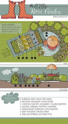 Lisa Orgler Design: THE WELLIE RAIN GARDEN