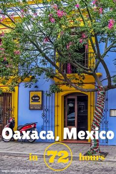 Oaxaca showcases everything that is great about Mexico. Friendly locals, amazing food, a rich history and so much color. Read on to discover how to make the most of 3 days in Oaxaca, Mexico.