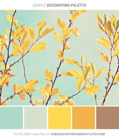 Fall Photo Print autumn leaves fall decor photography print nature botanical yellow aqua sky gifts for her gifts for fall art Scheme Color, Color Schemes Colour Palettes, Room Color Schemes, Colour Pallette, Color Palate, Yellow Color Schemes, Nature Color Palette, Yellow Color Combinations, Yellow Paint Colors