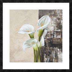"Global Gallery 'Nature II' by Jenny Thomlinson Framed Graphic Art Size: 32"" H x 32"" W x 1.5"" D"