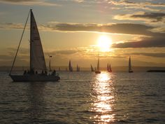 Seattle Sailing Sunset