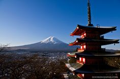 Image result for japanese castle and mount fuji