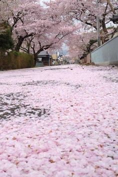 Welcome to Hinamizawa, Japan