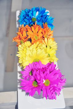Brightly coloured mums all in a row!