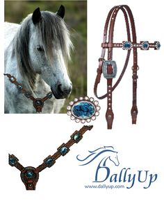 Love this tack set with a grey horse or any color horse! www.dallyup.com