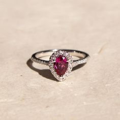 A stunning ring by #coastdiamond (LC10235-PS) Pear shaped .63CT Pink Sapphire halo ring set in 14K white gold #marsala #diamonds #pinksapphire