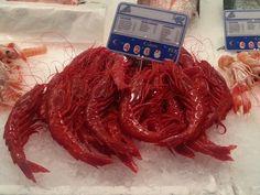 Rojo carabinero - mercado Marbella
