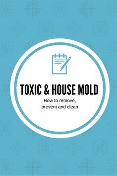 How To Clean Mold From A Couch Remove Mold And Cleanses