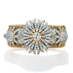6b55df5768ec6 853 Best Jewels Jean Schlumberger images in 2019 | Tiffany jewelry ...
