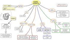 Mappa concettuale su l'HOMO HABILIS      STAMPARE LA MAPPA:  1) Clicca sulla  mappa (in modo che si ingrandisca); 2) clicca col tasto destro...