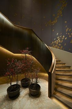 Waldorf Astoria Beijing Dramatic stairs, charcoal and gold and the perfect accent lighting.