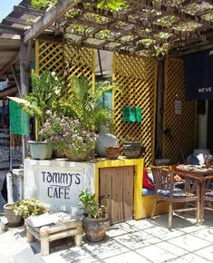 Tommy's Cafe: Best Breakfast in Bali - See 323 traveler reviews, 62 candid photos, and great deals for Legian, Indonesia, at TripAdvisor. Kuta, Best Breakfast, Amazing Places, Great Deals, Candid, Trip Advisor, The Good Place, Pergola, Outdoor Structures