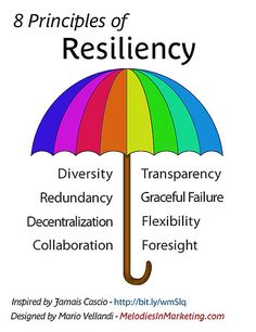 8 Principles of Resiliency: Diversity, Transparency, Redundancy, Graceful Failure, Decentralisation, Flexibility, Collaboration, Foresight